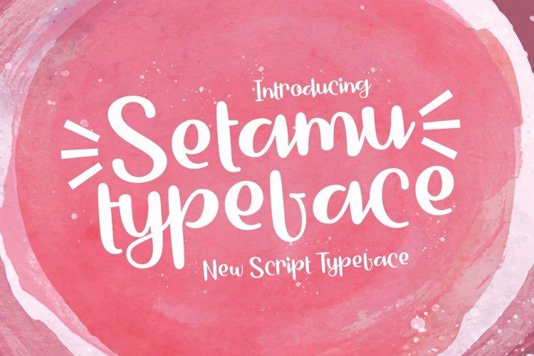 Web Font Setamu example image 1