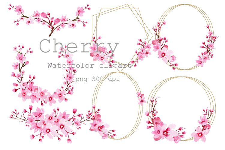 Watercolor clipart Cherry Blossom ,Frames gold,Sakura Flower