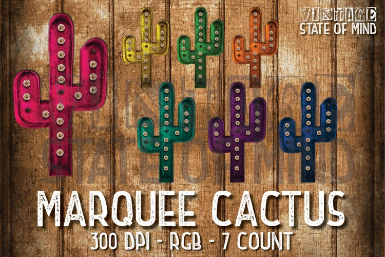 Cactus Marquee Sublimation Graphics example image 1