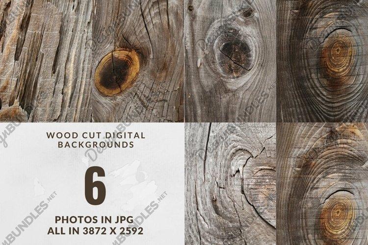 Old tree digital backgrounds