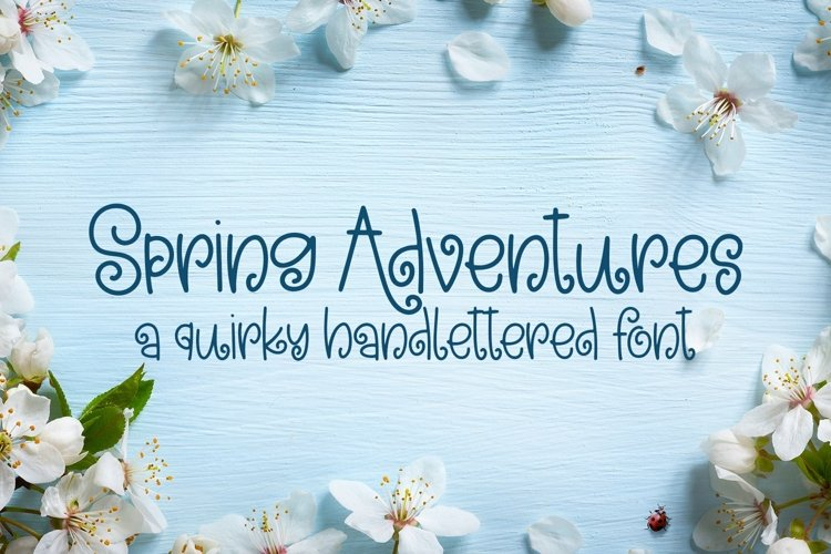 Web Font Spring Adventures - A Quirky Hand-Lettered Font example image 1