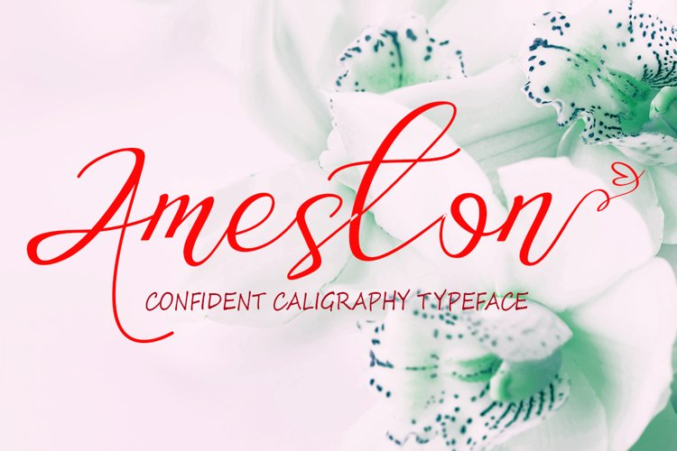 Ameston example image 1