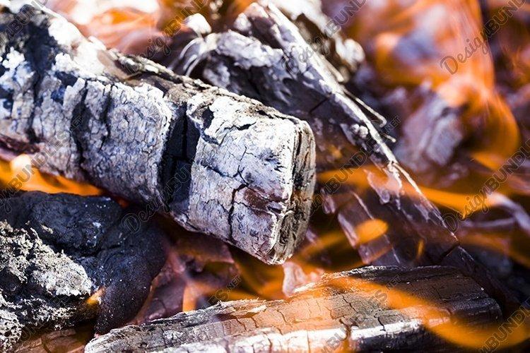burning felled trees example image 1