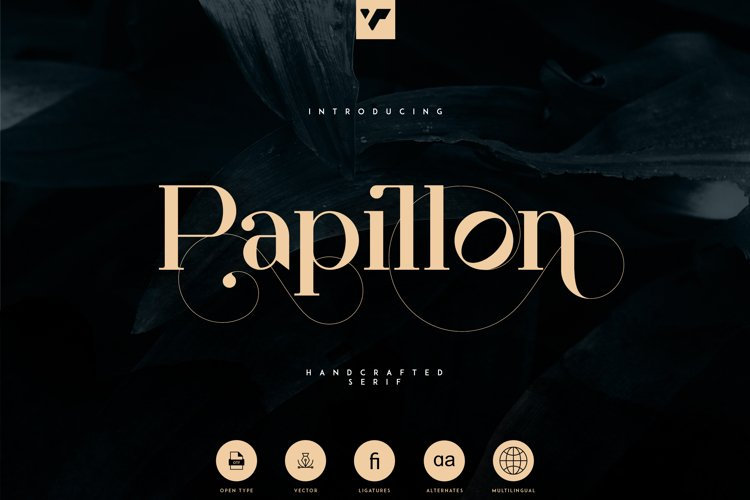Papillon - Handcrafted Serif Font example image 1