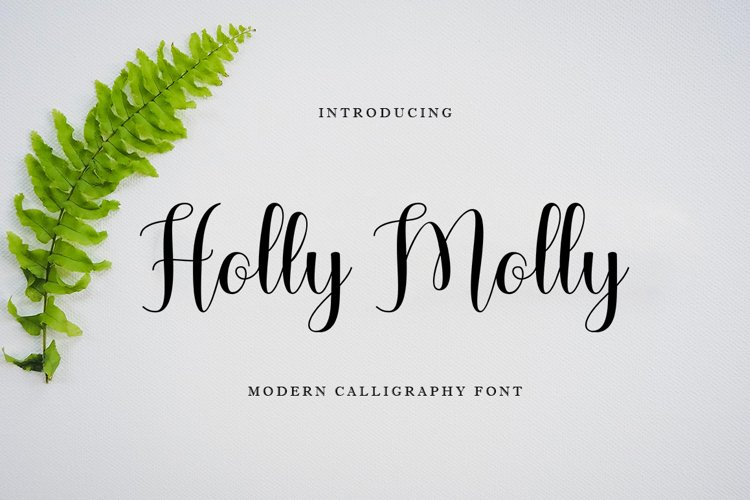 Holly Molly example image 1