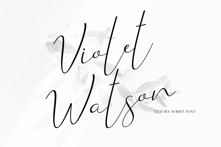 Violet Watson - Script Font example image 1