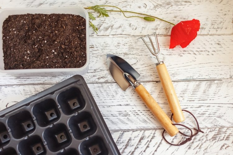 A set of photos on the theme of gardening