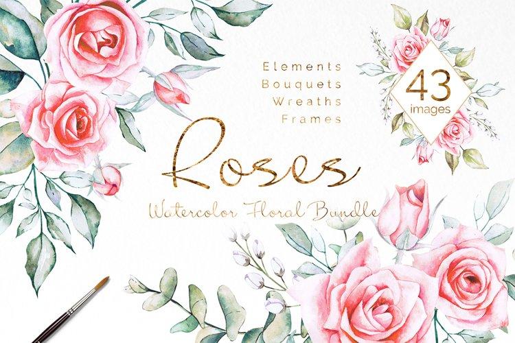 Pink Roses Watercolor Bundle example image 1