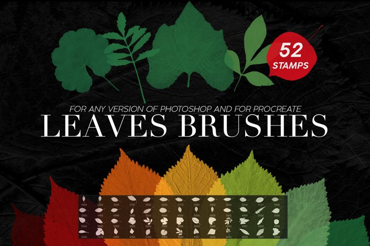 Leaves Photoshop Stamp Brushes example image 1