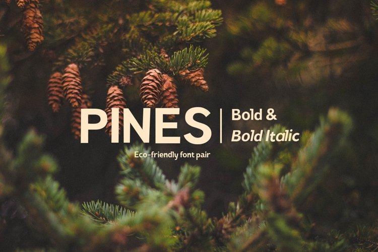 Pines Bold & Pines Bold Italic example image 1