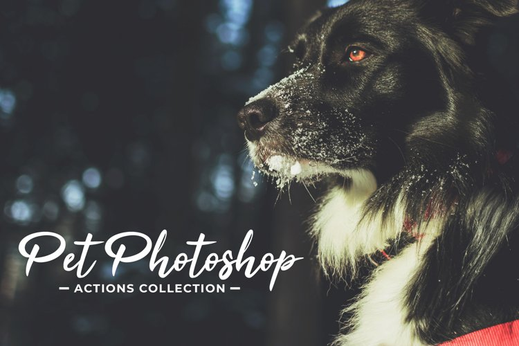 Pet Photoshop Actions Collection example image 1