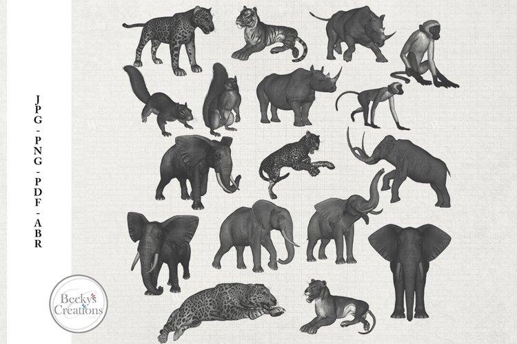 Animal Photoshop Brushes/Illustrations example image 1