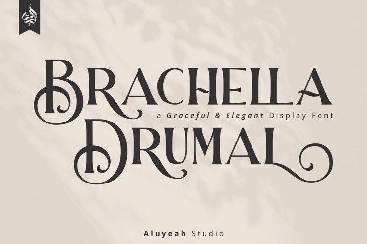 Brachella Drumal