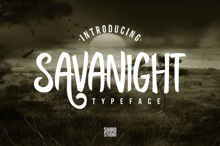 Web Font Savanight example image 1