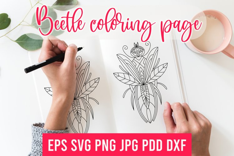 Beetle SVG.Beetle coloring page. Beetle Sublimation