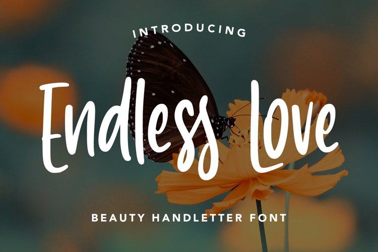 EndlessLove - Beauty Handletter Font