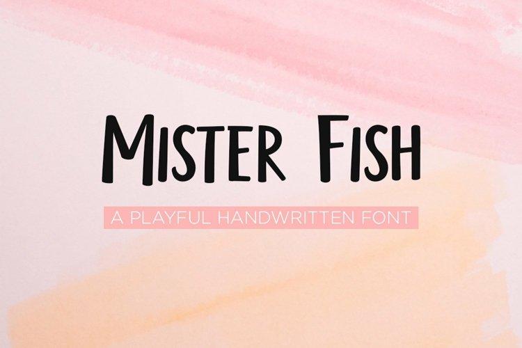Web Font Mister fish- a playful fun font example image 1