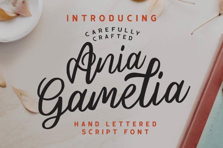 Ania Gamelia - Handlettering Script Font example image 1