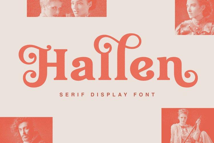 Hallen - Modern Classic Font example image 1