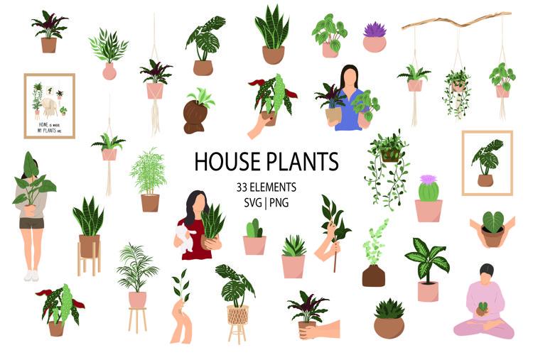 Houseplant clipart, Indoor plants SVG, home plants graphics