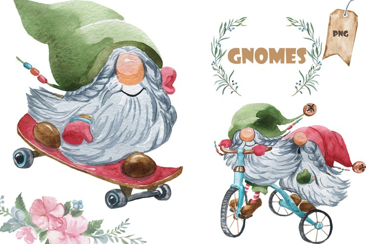 20 gnomes example image 1