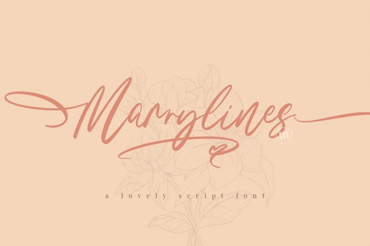 Marrylines - A Lovely Script Font example image 1