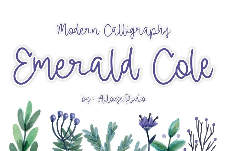 Web font - Emerald Cole - Modern Calligraphy Font example image 1