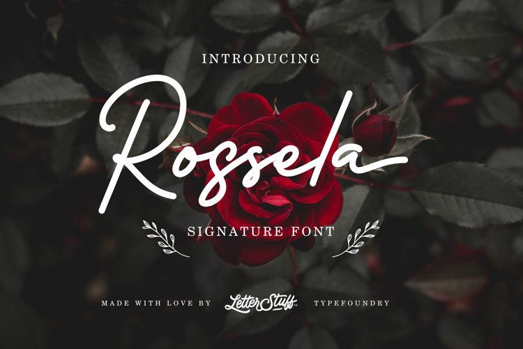 Rossela Signature Font & Extras example image 1