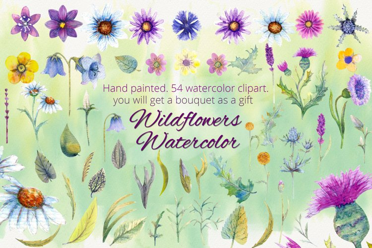 Wildflowers. Watercolor clipart example image 1