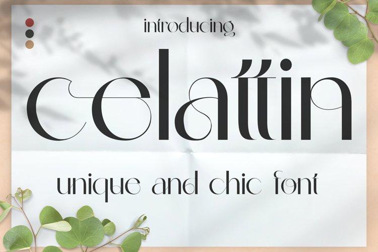 Celattin - Unique Ligature Font example image 1