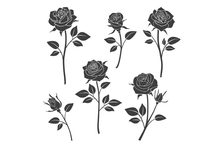 Rose buds vector silhouettes. Flowers design elements example image 1