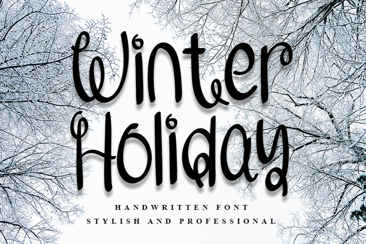 Winter Holiday | Handwritten Font example image 1