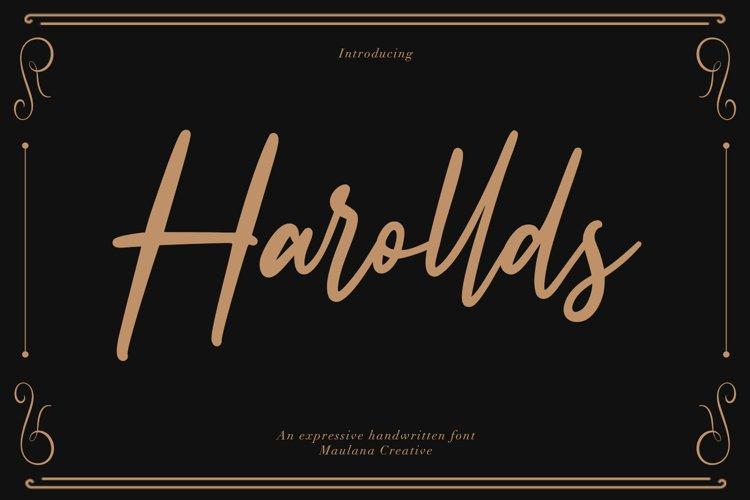 Harollds Expressive Handwritten Font example image 1