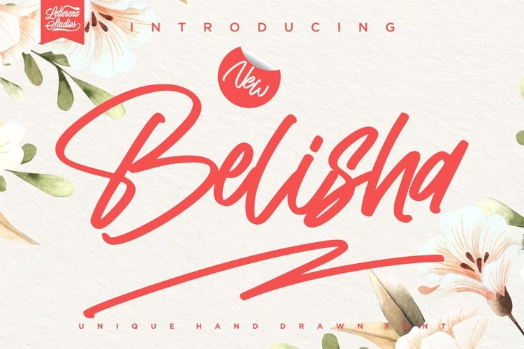 Belisha - Unique Handwritten Signature Font example image 1