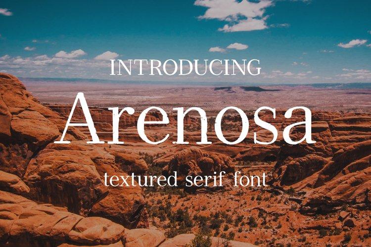 Arenosa | textured serif font example image 1