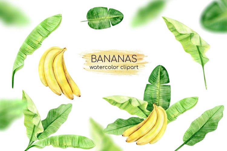Watercolor Banana Leaves Clipart. Banana Plant. Exotic Green example image 1