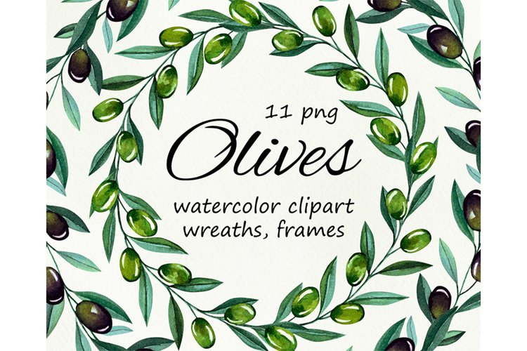 Watercolor olive branches, wreathes clipart, png files example image 1