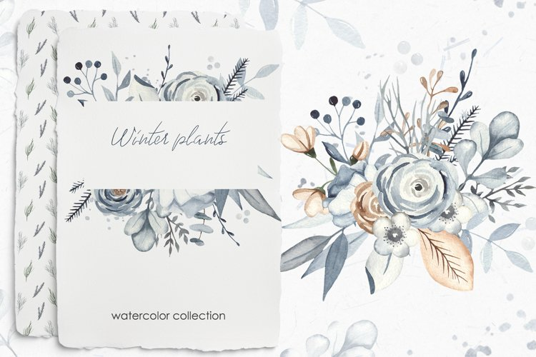Winter plants watercolor collectoin example image 1