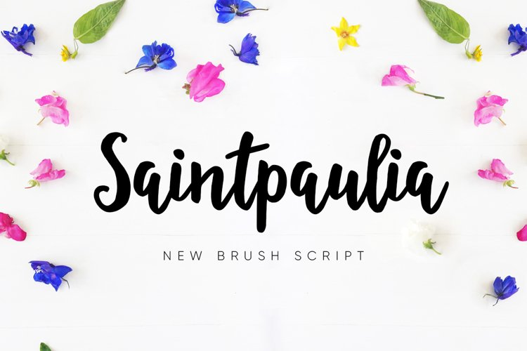 Saintpaulia example image 1