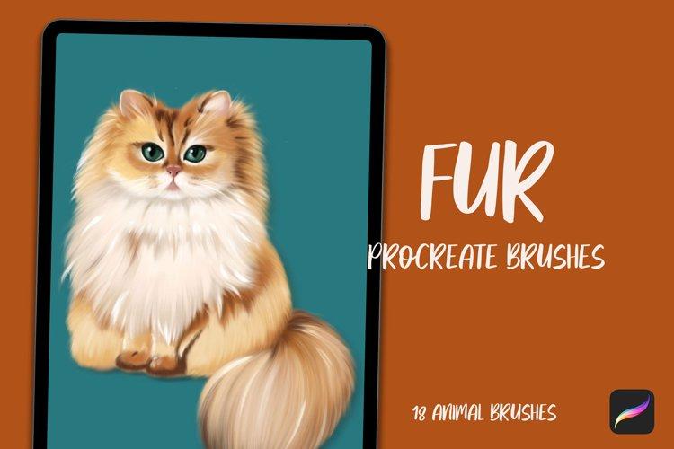 18 Fur brushes for Procreate, Animal hair brushes