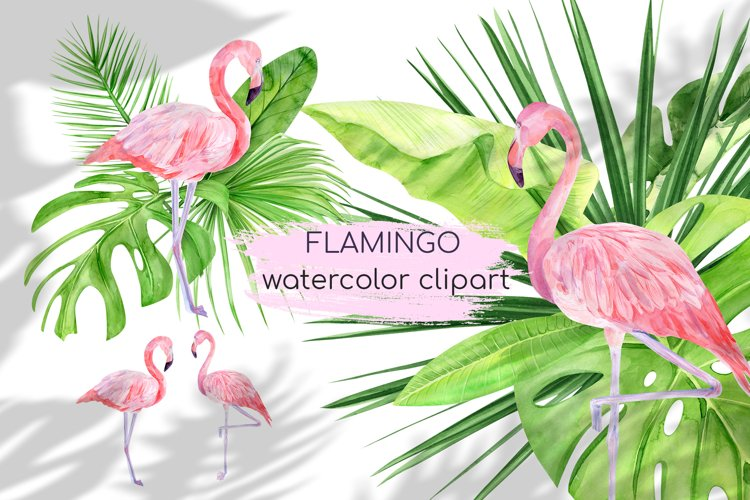 Watercolor Flamingo Clipart. Tropical pink famingo