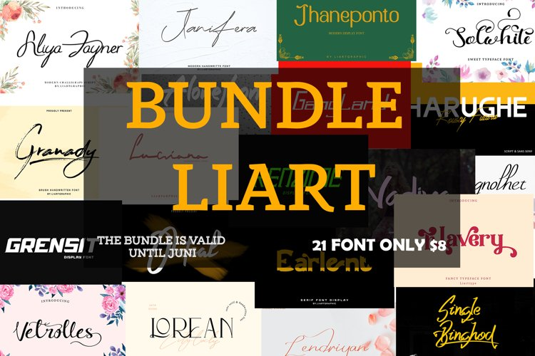 Bundle Liart