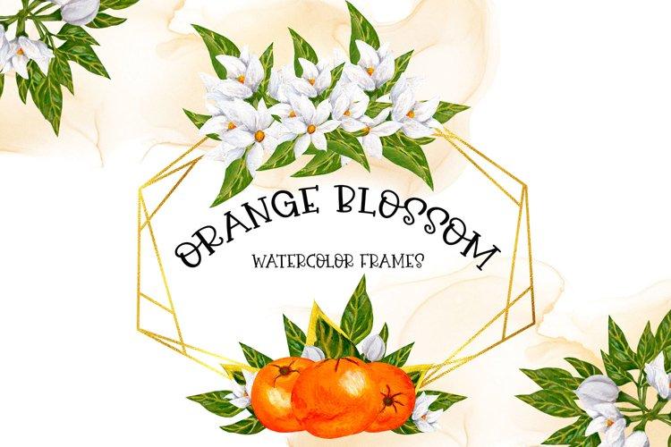 Orange Blossom Frames example image 1