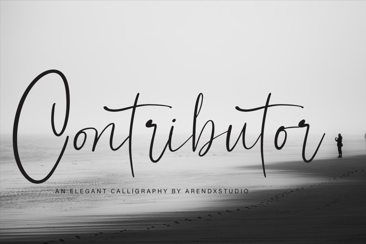 Contributor Calligraphy Font example image 1