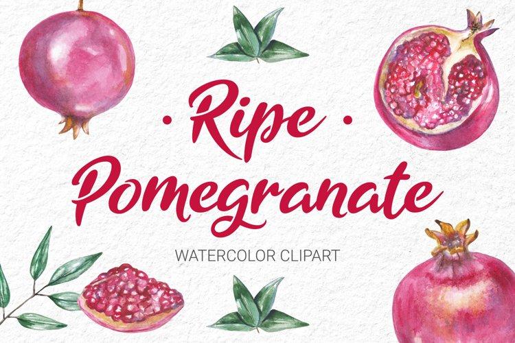 Watercolor Pomegranate Clipart Collection