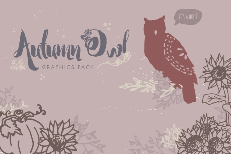 Autumn Owl Graphics Pack example image 1