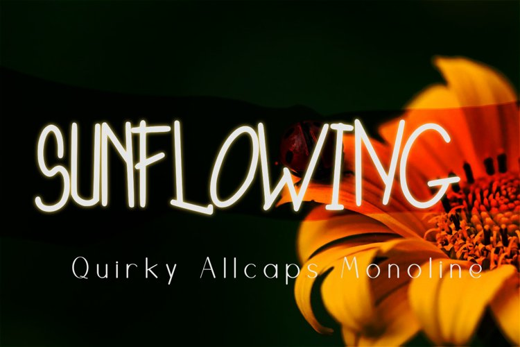 Sunflowing Quirky Monoline Font example image 1