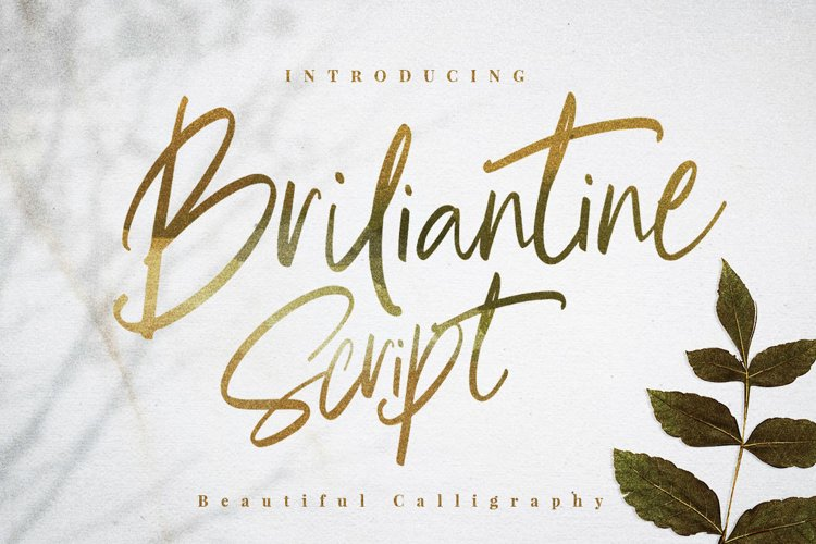 Briliantine Script example image 1
