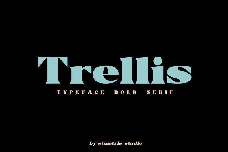 Trellis -Typeface Bold Serif example image 1