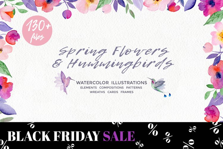 Spring Flowers and Hummingbirds Wanercolor Set example image 1
